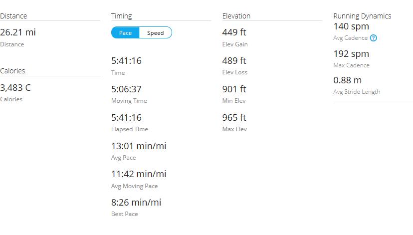 Day 40 Run