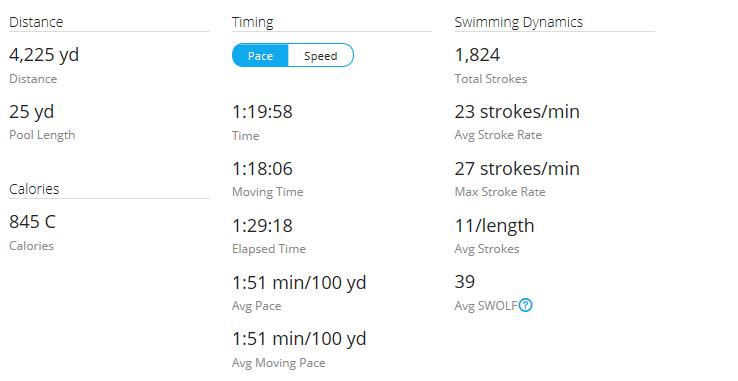Day 41 Swim