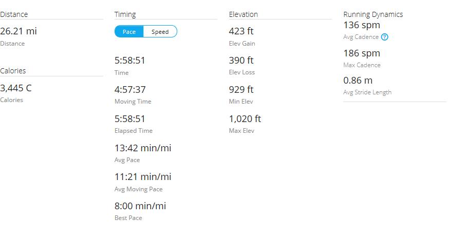 Day 41 Run