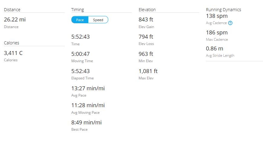 Day 42 Run