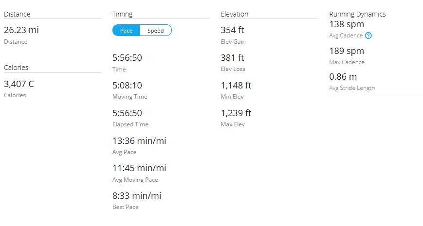 Day 43 Run