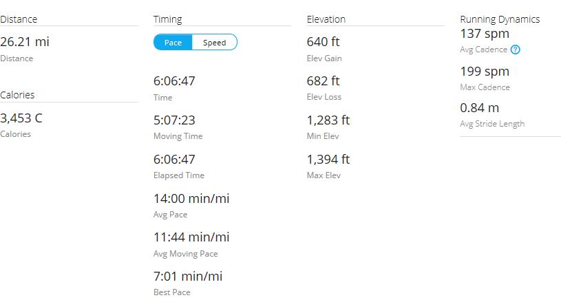 Day 44 Run