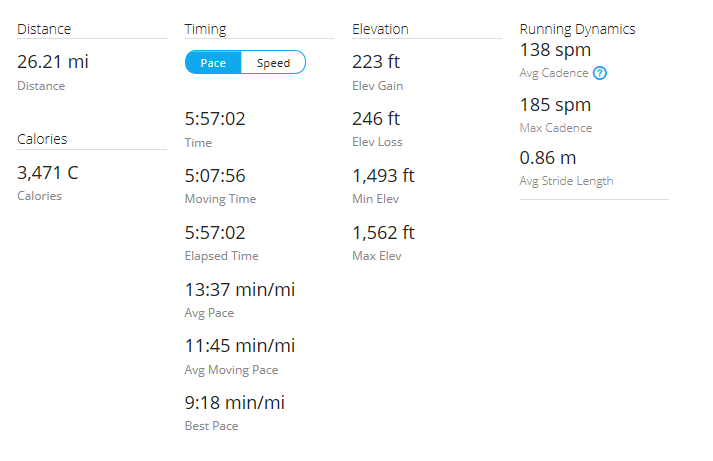 Day 45 Run