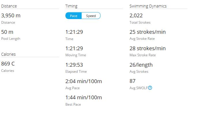 Day 46 Swim
