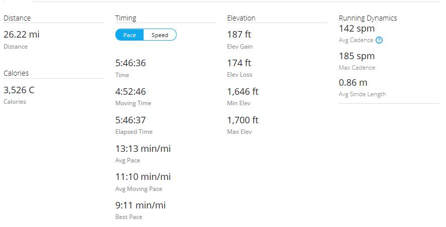 Day 46 Run