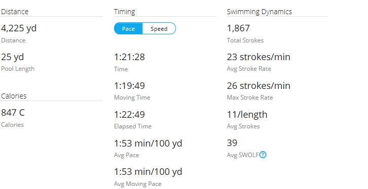 Day 47 Swim