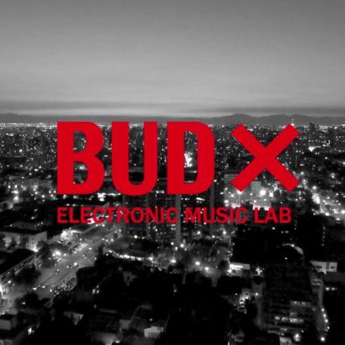 BUDX.jpg