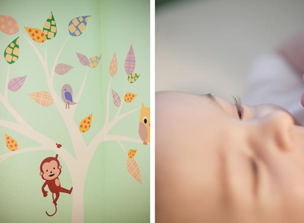 Sonoma Baby Portraits 3