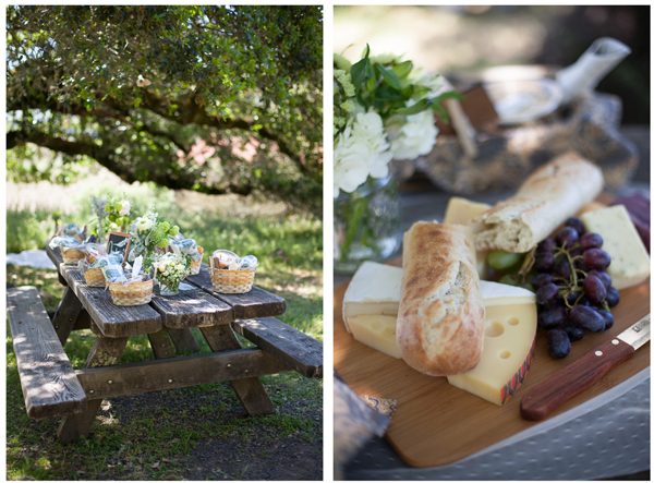 Jack London Park Picnic Wedding 2