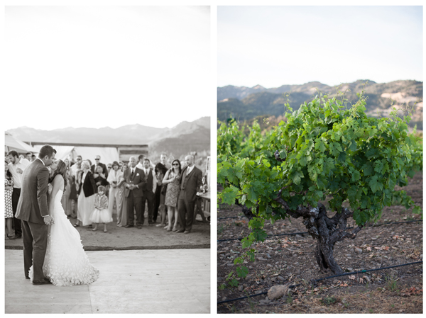 Napa Valley Vineyard Wedding 13
