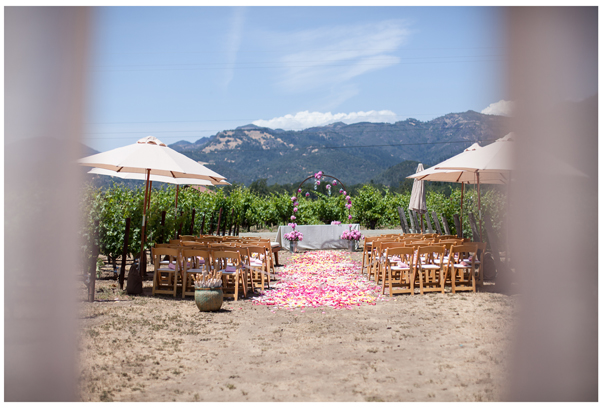 Napa Valley Vineyard Wedding 5