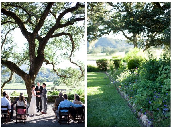 Sonoma Valley Intimate Wedding 7