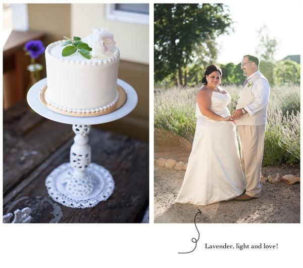 Soda Rock Winery Healdsburg Wedding 7