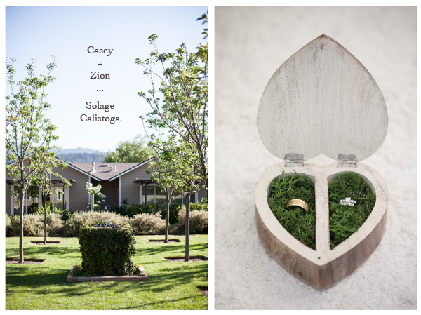 Solage Napa Valley Wedding 1