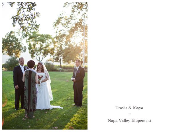 Napa Valley Vineyard Elopement 1