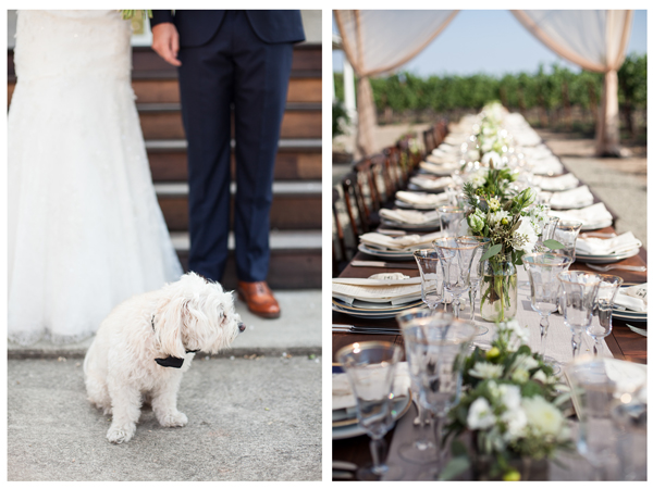 Napa Valley Vineyard Wedding 2