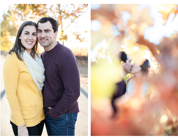 sonoma winery engagement 4