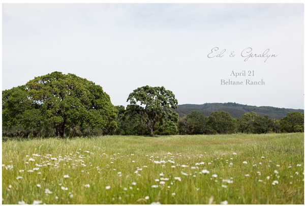 Barn & Vineyard Elopement 1