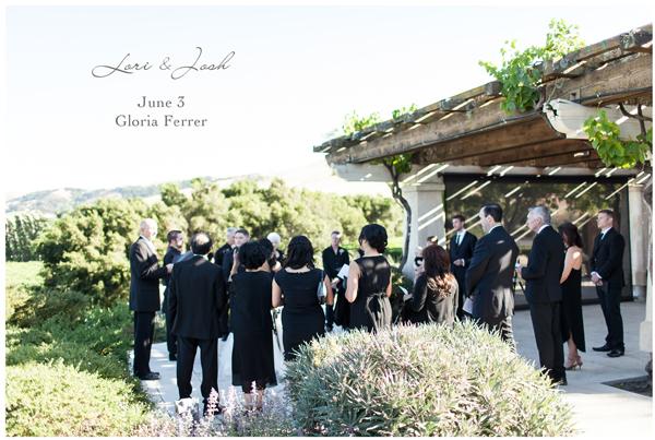 Gloria Ferrer Vineyard Wedding 1
