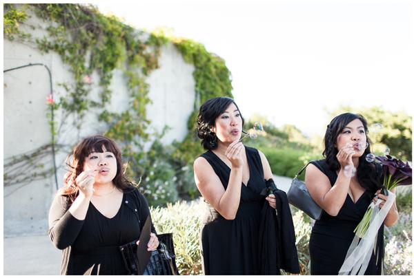 Gloria Ferrer Vineyard Wedding 4