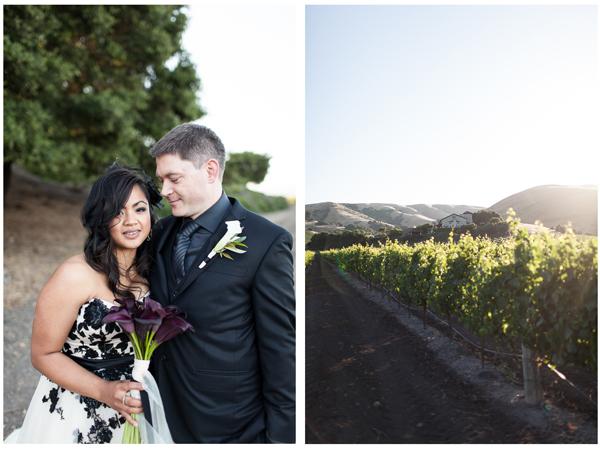 Gloria Ferrer Vineyard Wedding 6