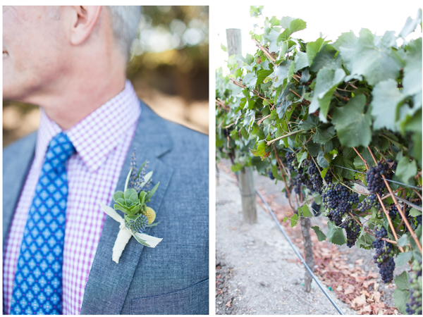 Sonoma Vineyard Wedding 2