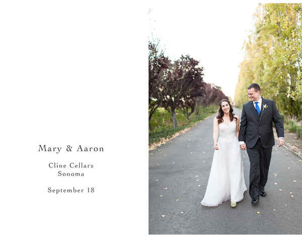 Cline Sonoma Winery Wedding 1