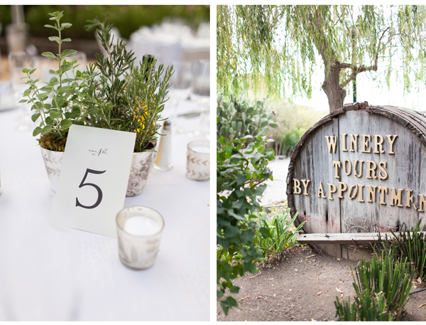 Cline Sonoma Winery Wedding 2