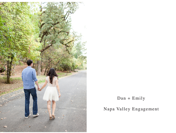 napa valley engagement 1