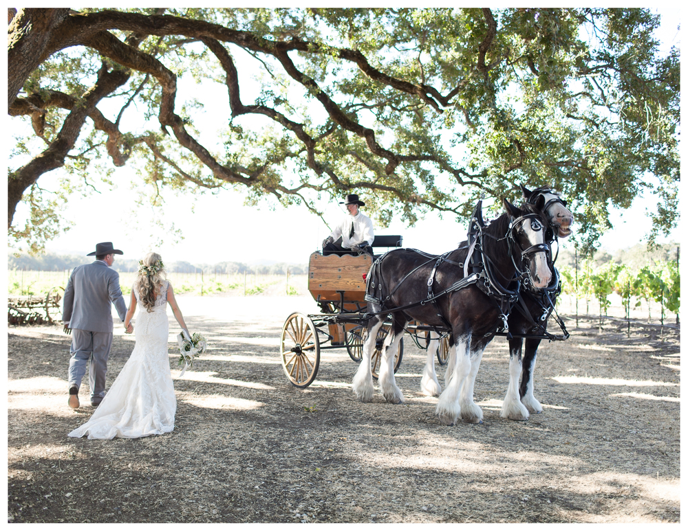 sonoma ranch wedding 1.jpg