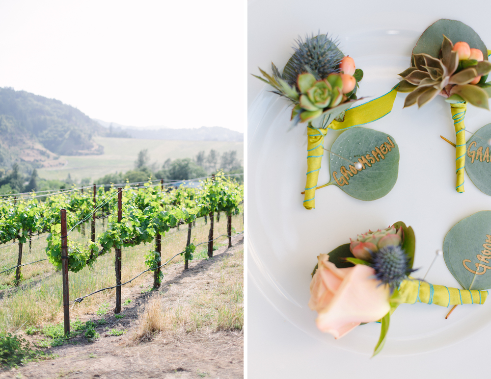 Healdsburg Winery Wedding 1.jpg