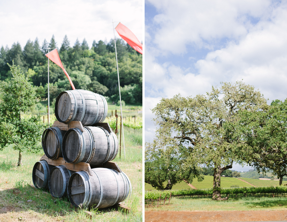 sonoma winery wedding 1.jpg