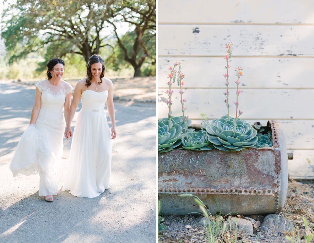 beltane ranch sonoma wedding 6.jpg