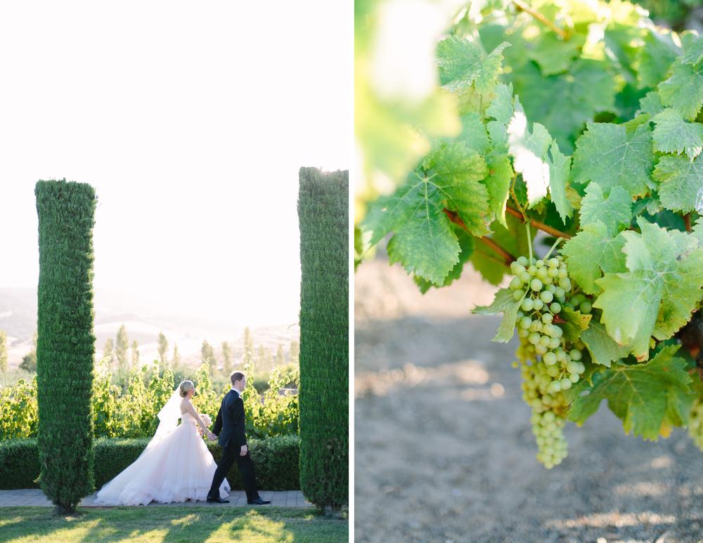 viansa winery wedding 6.jpg