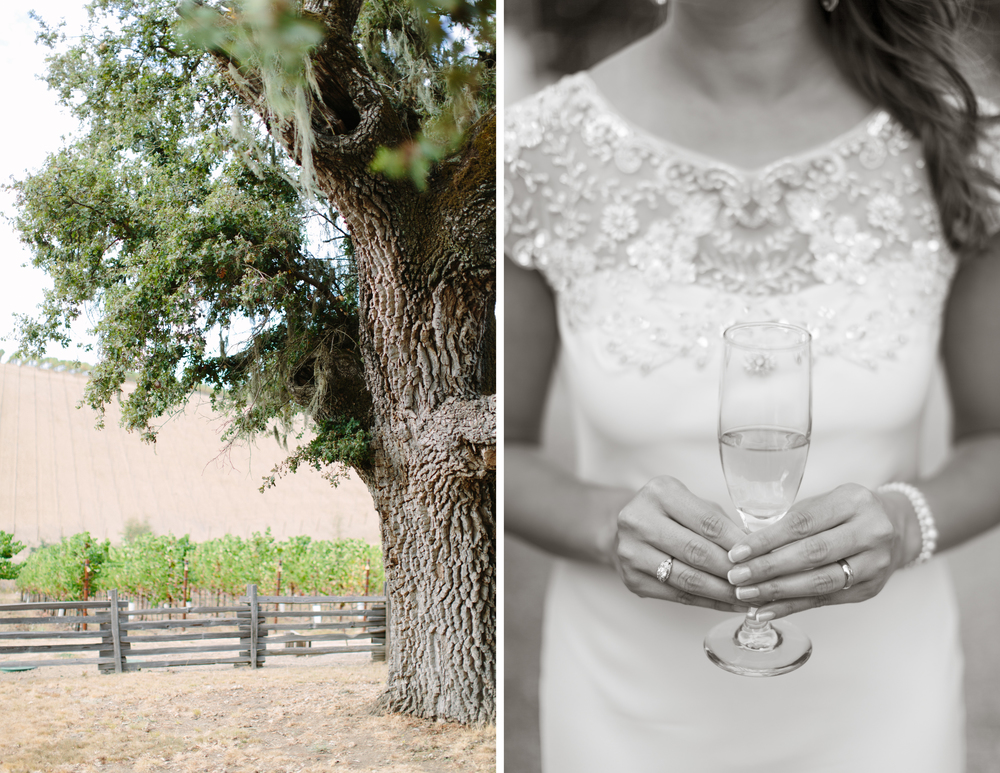 healdsburg winery wedding 8.jpg