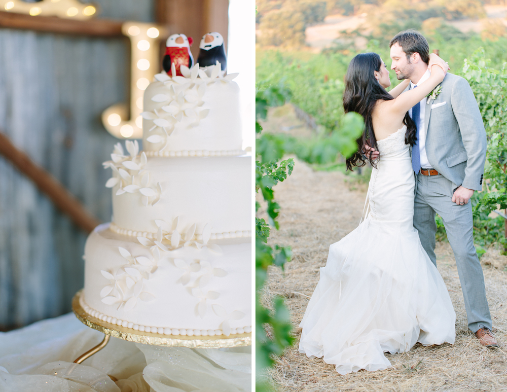 Contento Vineyard Wedding 11.jpg