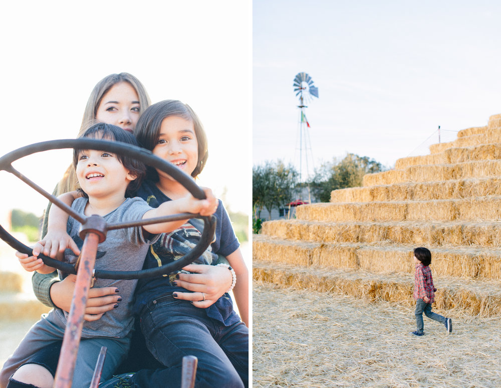 family photos pumpkin patch napa 3.jpg