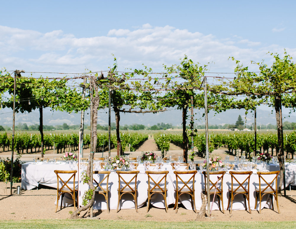Trentadue Winery Wedding 22.jpg