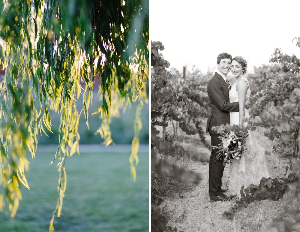 sonoma wedding 25.jpg