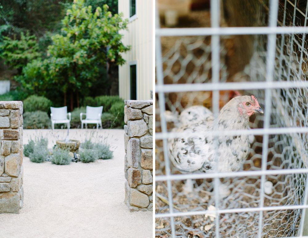 farmhouse inn sonoma elopement 3.jpg