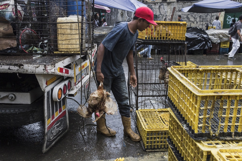 """""""The minimum salary is $85.06. For August, inflation was 3.9% in 2014, and it increased to 39% in eight months."""" (Source: Central Bank of Venezuela).   """"  El salario m'nimo son 85,06 d—lares. La inflaci—n de agosto en 2014 fue 3,9% y acumula 39% en ocho meses. """" (Fuente: Banco Central de Venezuela)."""