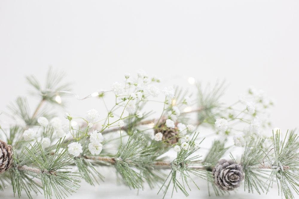 Shop the Christmas Collection -
