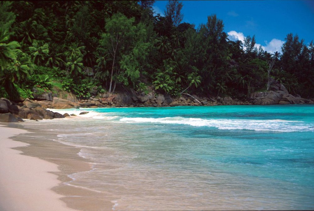 The real Anse La Liberte (it's almostas beautiful as Bay of Freedom!)