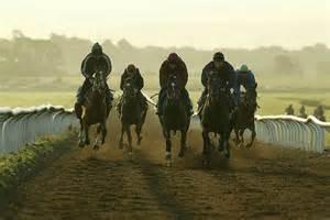 cuuargh gallops.jpg