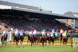 Punchestown Racecourse  (Courtesy Punchestown races)