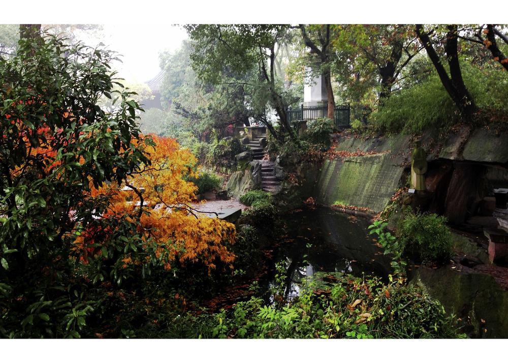 Hangzhou Botanical Park, Hangzhou, China