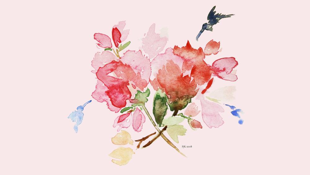 January Carnations - Desktop Background