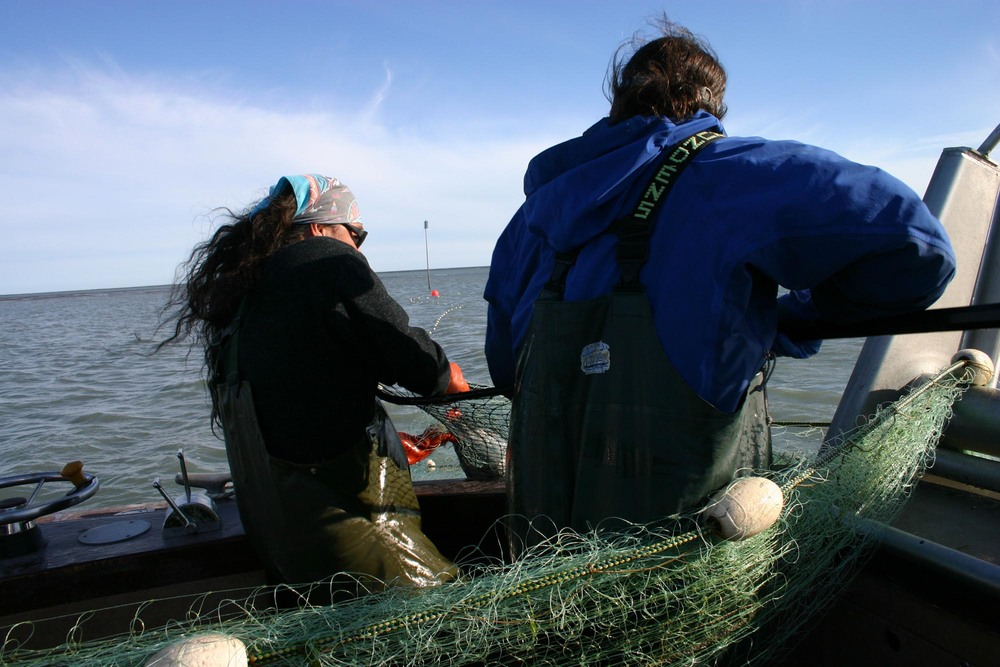 The future ofseafood   starts with fishermen