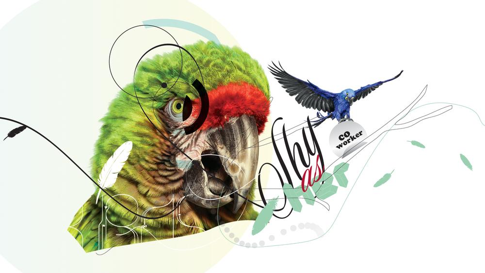 BIRDS_04.jpg