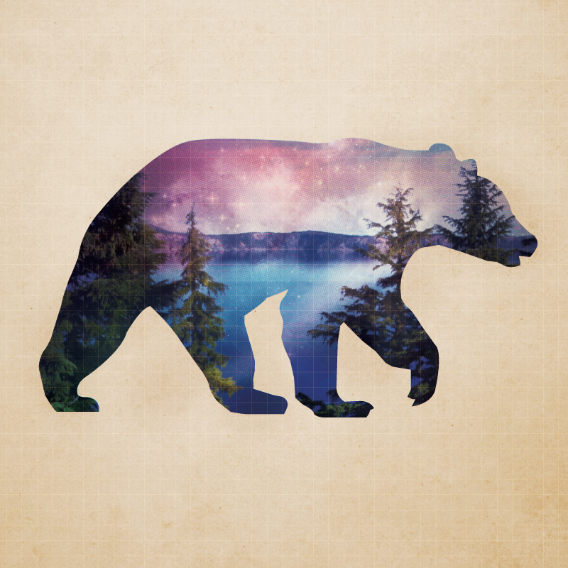 animal-mextures_bear4.jpg